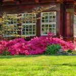 Få et komplet haveanlæg i høj kvalitet